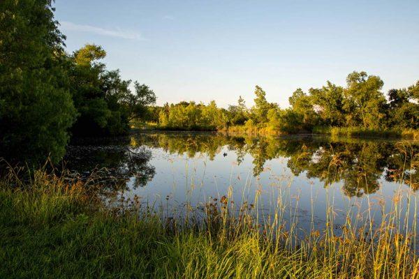 Serenity View pond