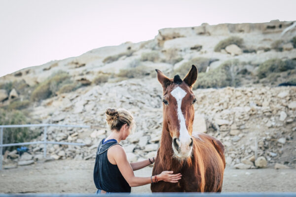 How Does Equine Therapy Work? - The Meadows Texas