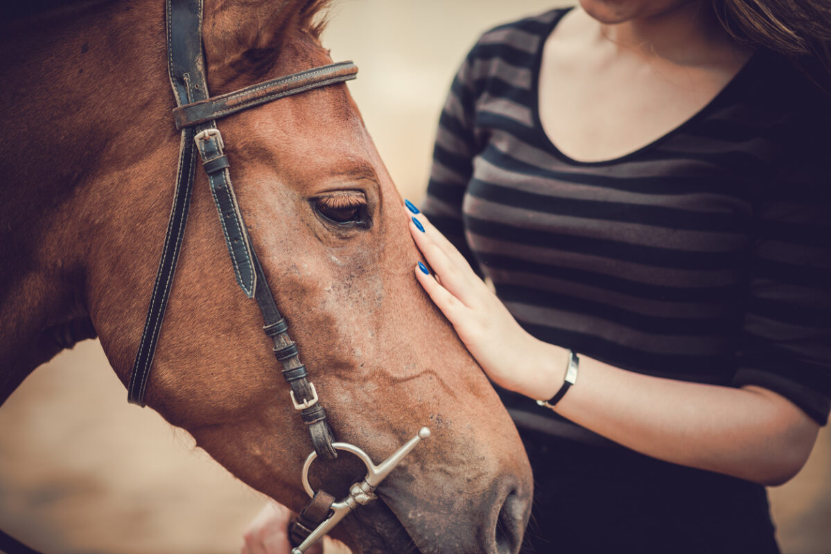 The Mental Health Benefits of Equine Therapy - The Meadows Texas